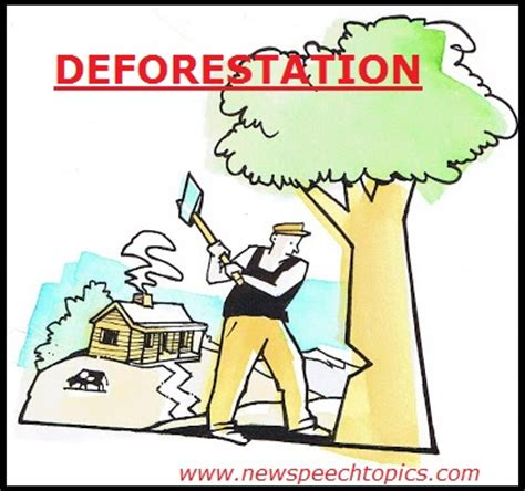 Effects deforestation essay